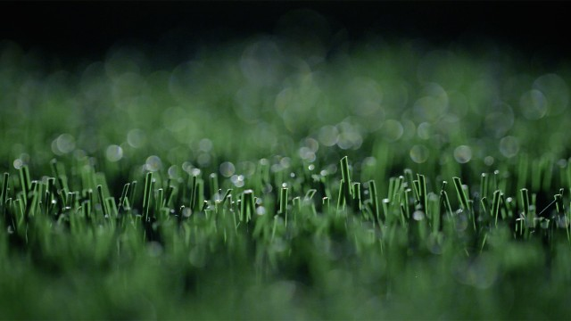 Close up on artificial turf by FieldTurf
